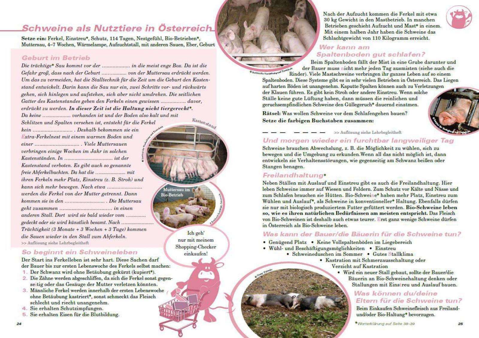 Ungewöhnlich Schweine Farbseite Ideen - Malvorlagen Ideen - blogsbr.info